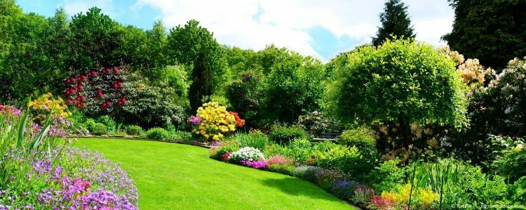Gartenpflege im Frühjahr – das sind die ersten Schritte